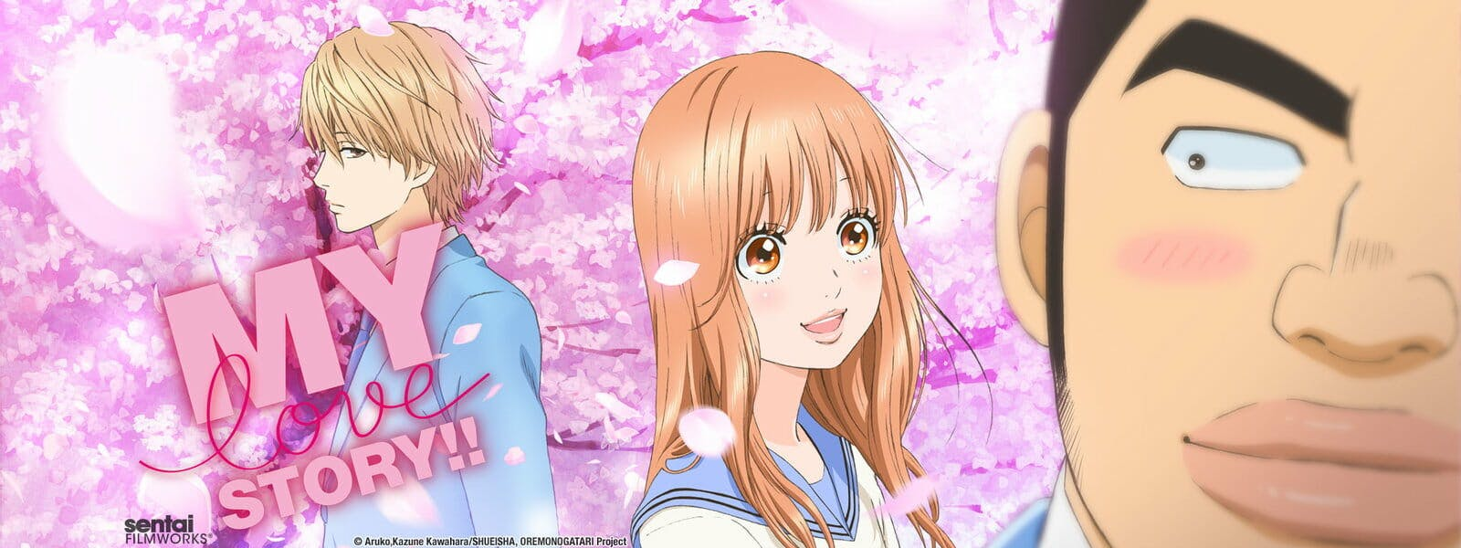 romance anime my love story