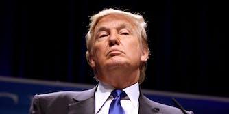 Donald Trump smug