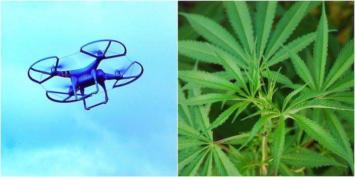 done weed california marijuana pot drop off