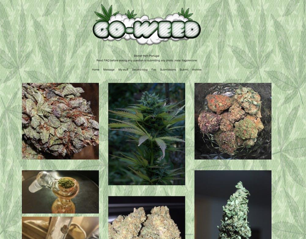 smoking weed tumbr : go weed