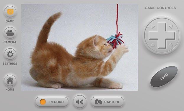 cat app