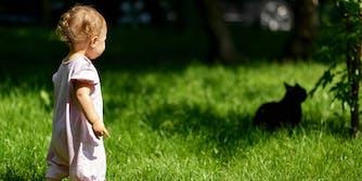 Little girl chases cat