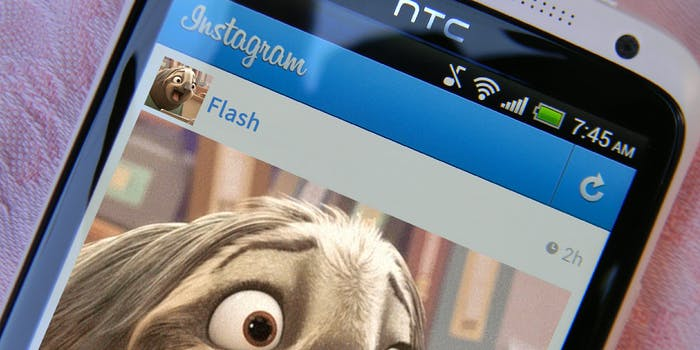 Flash the sloth Instagram account