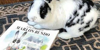 Bunny holding Marlon Bundo book