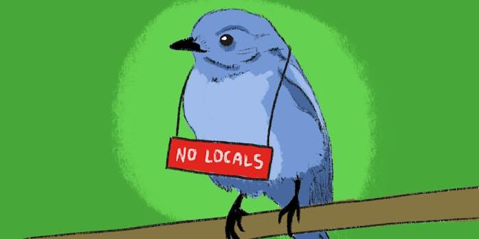 No Locals Twitter