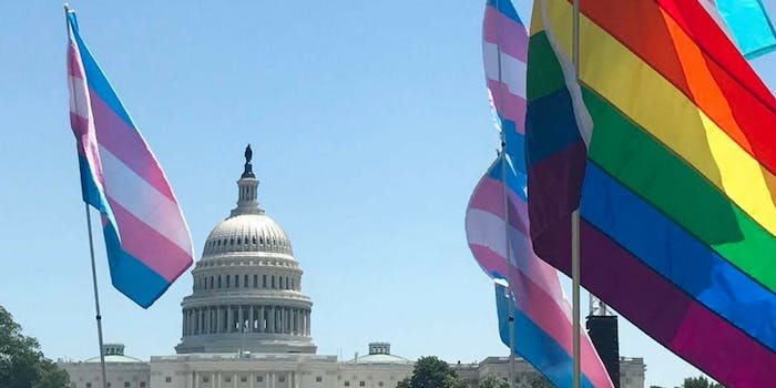 Trans pride and Gay pride flags in front of the U.S. capitol