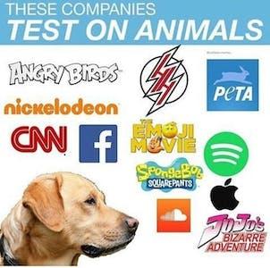 companies test on animals meme