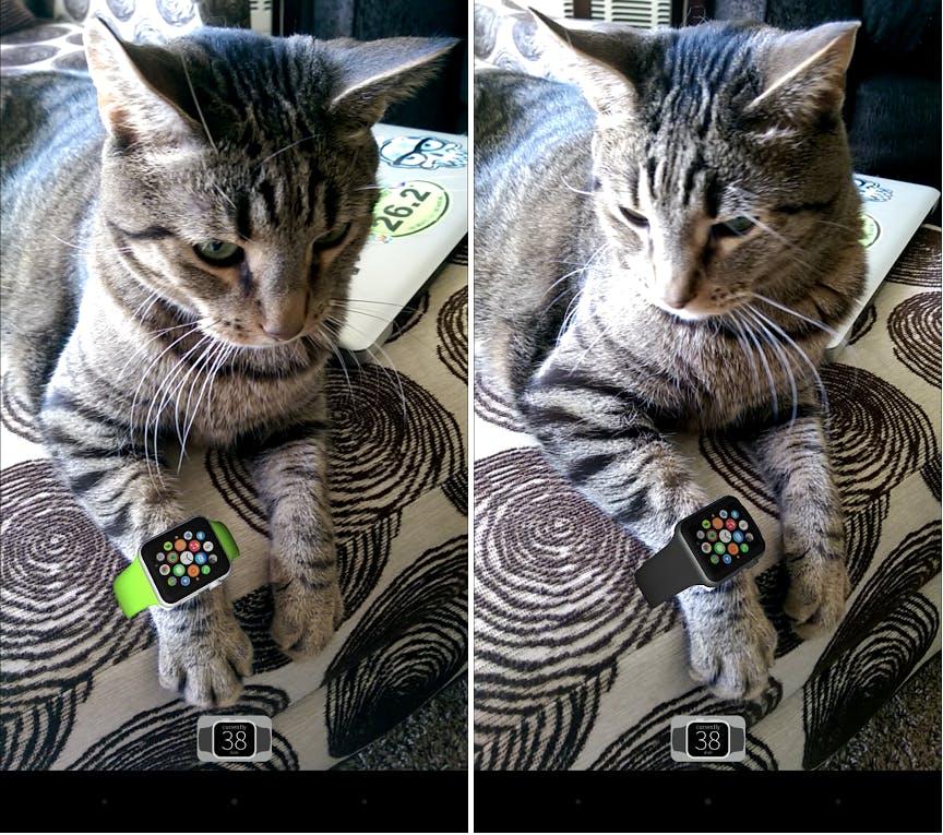 Cinnamon modeling the Apple Watch