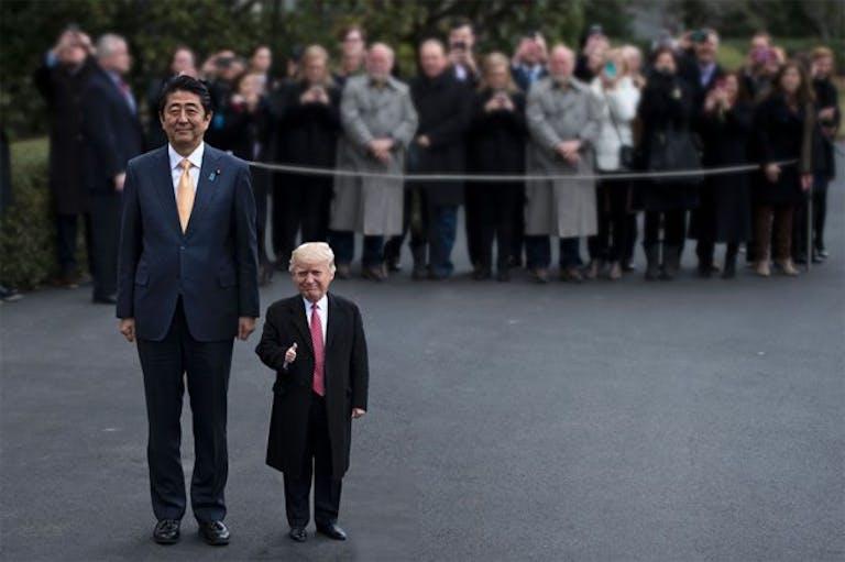 best trump memes : Tiny Donald Trump
