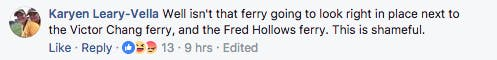 victor chang/fred hollows comment