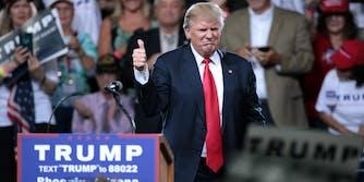Trump poses at a rally.