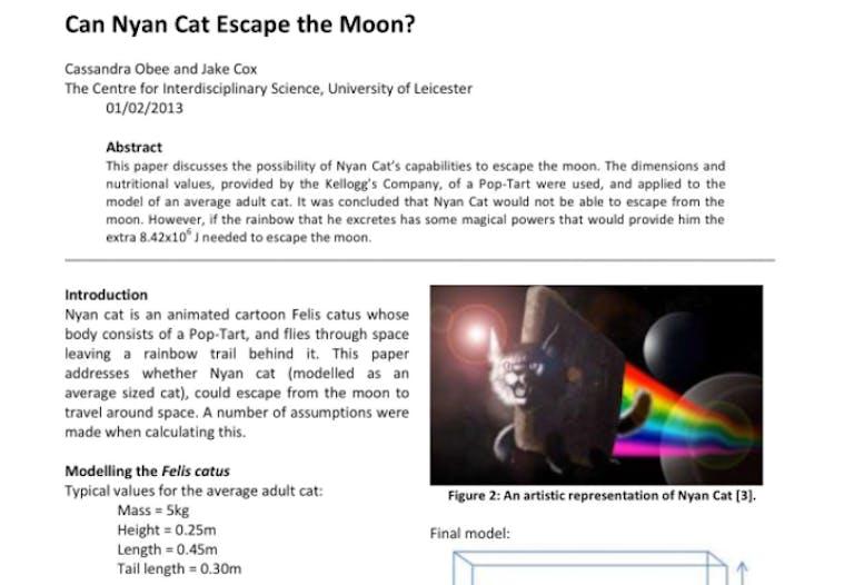 nyan cat thesis
