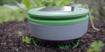 roomba weed whacker string trimmer