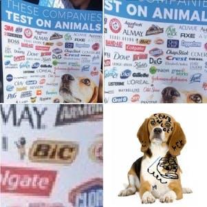 dog with bic pen animal testing meme
