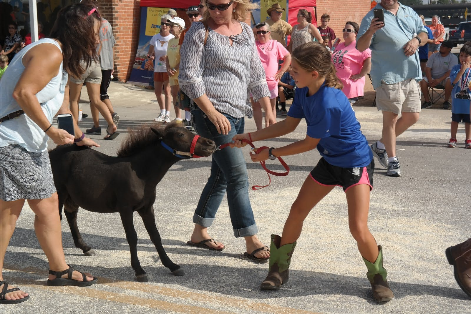 No pet parade is complete without an uncooperative Lil Sebastian.