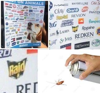raid bug spray animal testing meme