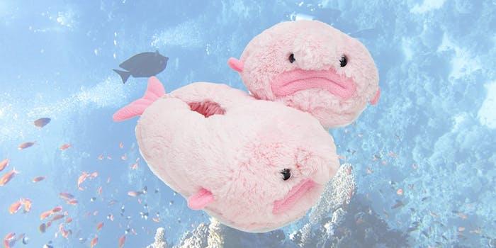 blobfish plush slippers