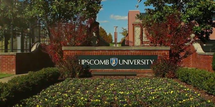 Lipscomb University cotton stalk centerpieces