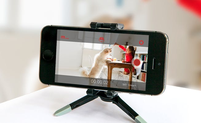 Phone on stand recording pet and child