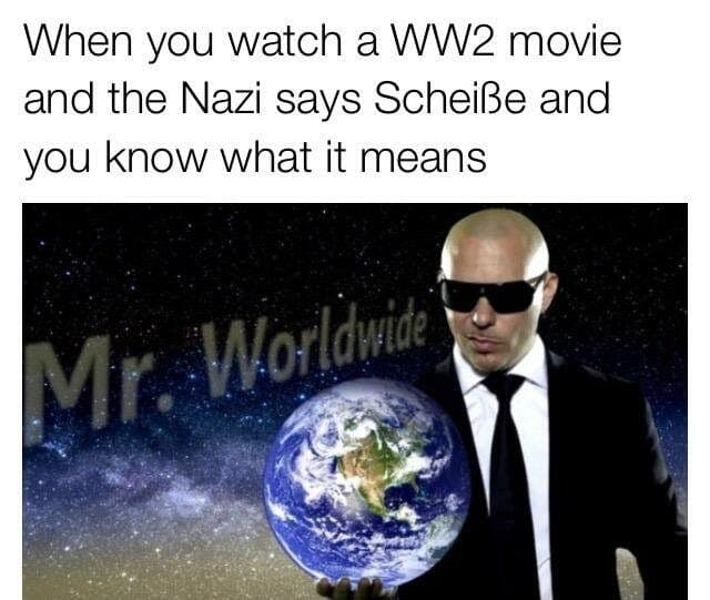 pitbull schiesse nazi meme mr worldwide