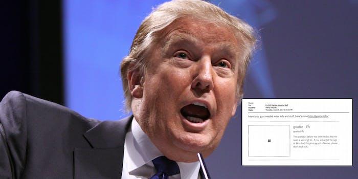 Donald Trump's commission on voter fraud got goatse'd