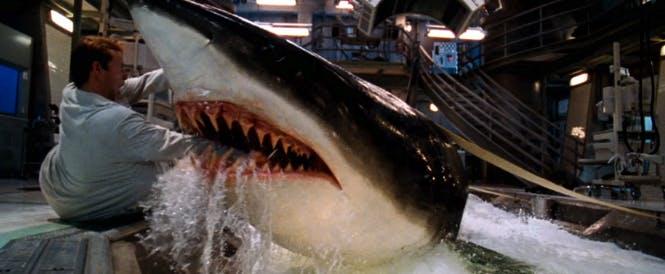 monster movies on netflix: deep blue sea