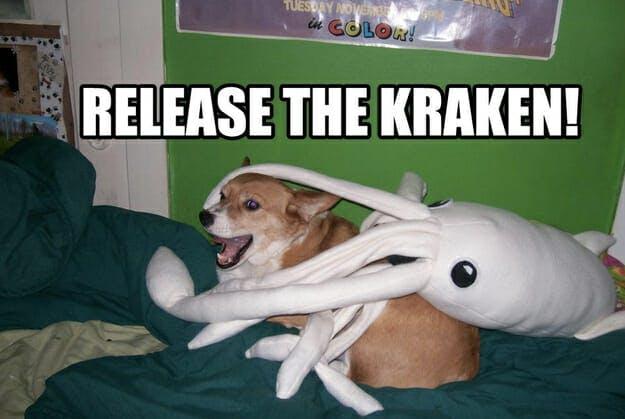 release the kraken meme: stuffed animal squid on top of corgi